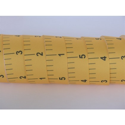 "5 yards 7/8"" School Ruler Print Grosgrain Ribbon"